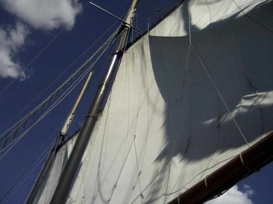 Sail (image: Guida Almeida)